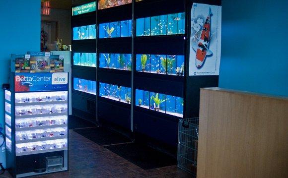 Aprils Aquarium