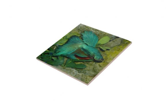 Blue Betta fish Tile | Zazzle