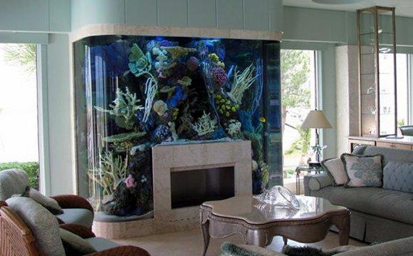 Aquarium? Think Again