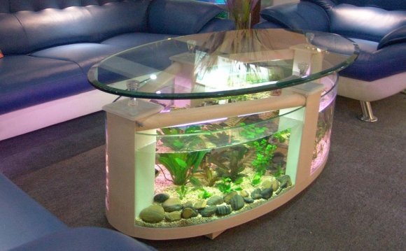 Coffee table fish