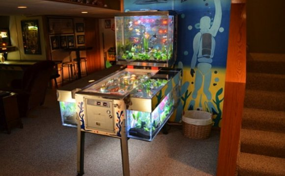 Unique Fish Tank