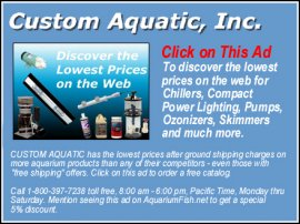 Custom Aquatics Inc. - Click on this Ad to discover the lowest prices on the web for aquarium chillers, compact power lighting, pumps, ozonizers, skimmers, and much more.
